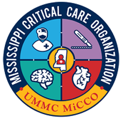 MiCCO_logo_patch.png