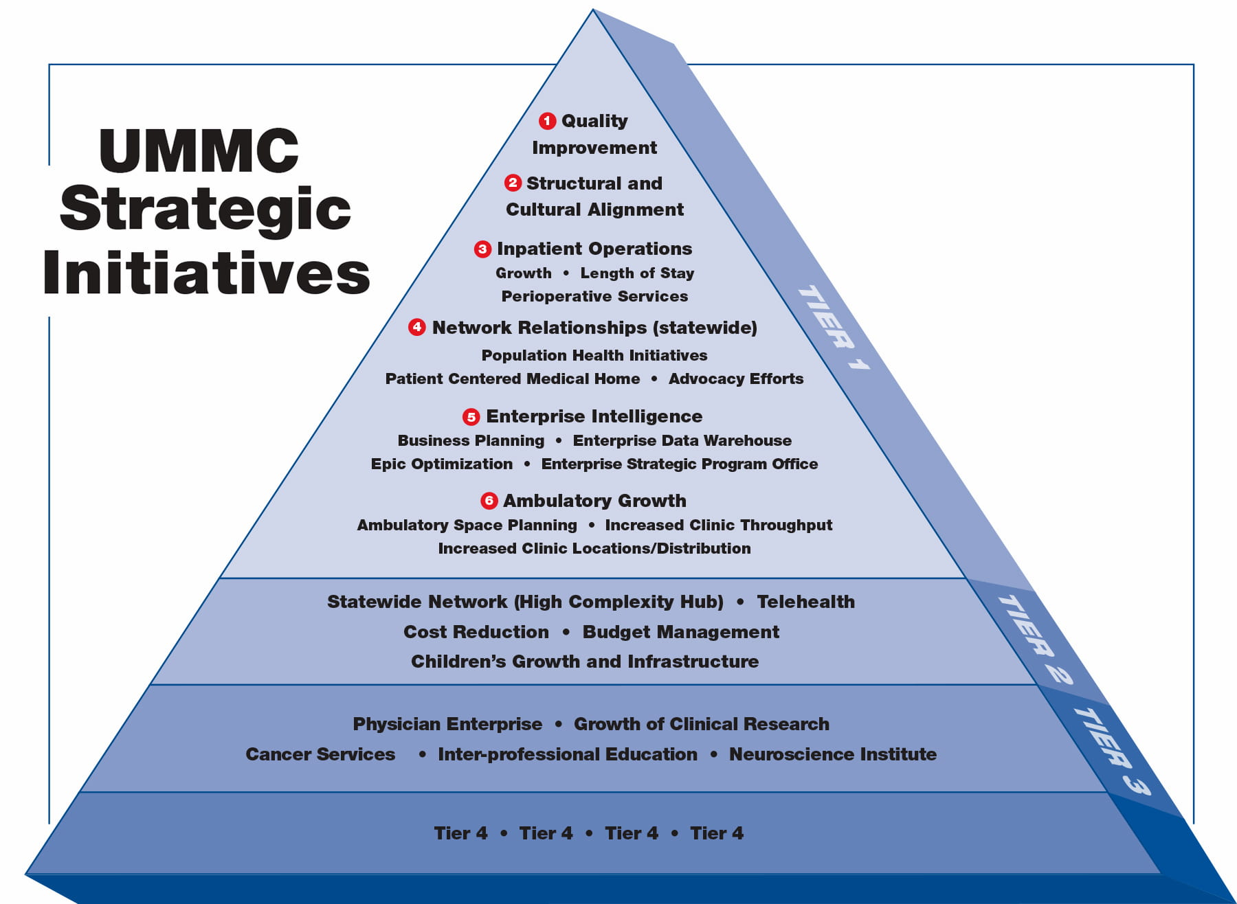Strategic Initiatives chart,jpg