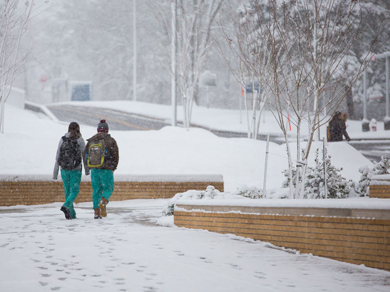 Second-year dental students make their way across the snowy campus.
