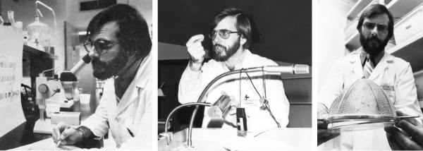 (Left): Dr. Steve Case in his biochemistry lab, in the 1980s.   (Middle): Case lectures first-year medical students in biochemistry class, during the early 1980s.  (Right): In a photo taken in the early 1980s, Case examines a strainer containing adult midges, which were raised in his biochemistry lab to study genes that encode proteins used by aquatic midge larvae to form underwater silk fibers.
