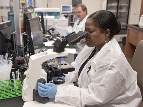 Medical laboratory technician Jacqueline Bell examines patient specimens.