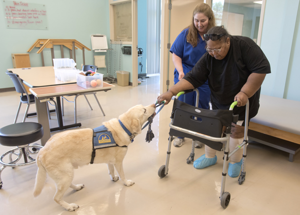 Under the guidance of physical therapist Gina McRae, left, Christine Porter, takes a walk with the assistance of Lanny, who tugs the rope she's holding.