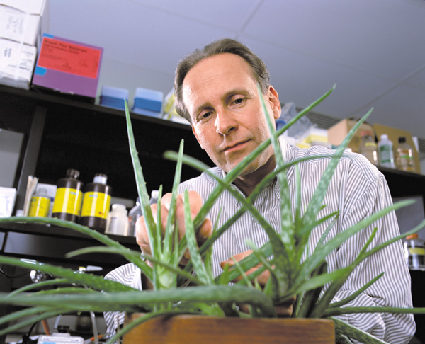 Dr. David Pasco leads the cancer drug discovery core in its mission to find new medicines from botanicals.