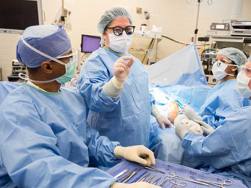 Koller, second from left, requests an instrument during a recent surgery.
