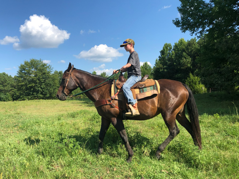 Hunter Lindsay now can enjoy holding the reins of his horse Dakota.