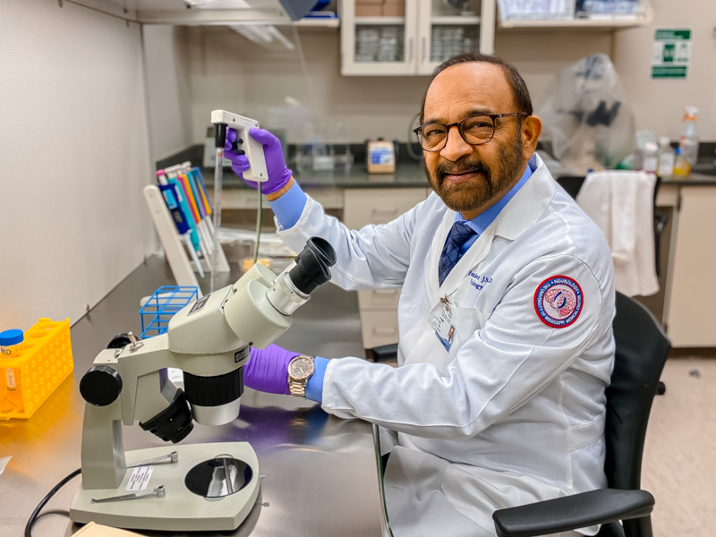 Dr. Parminder Vig has spent more than thirty years at UMMC studying neurological disorders.